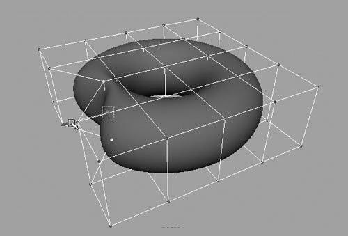 Cage deformed torus