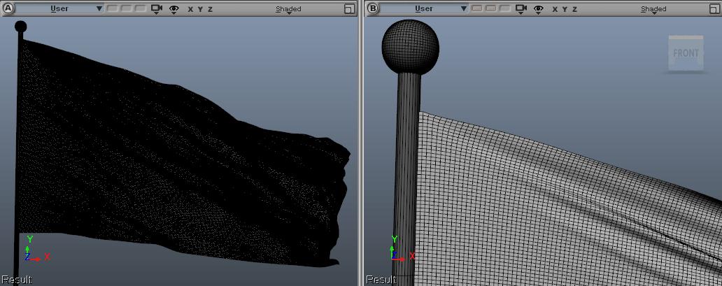 FleX dense flag wireframe