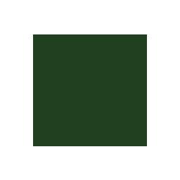 Olive NLE logo