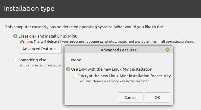 Linux Mint default installer LVM option